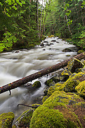 Sowerby Creek during spring runoff - Silver Lake Provincial Park near Hope, British Columbia, Canada
