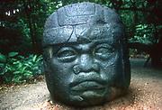 Pre-Columbian: Meso-America. Olmec 1150-800 BC. Carved head from La Venta.