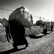 MELILLA, SPAIN - APRIL 19, 2010 : Women carrying  contraband goods up to 80 kg. in weight  to pass through Morocco in the border of  El Barrio Chino on April 19 , 2010 in Melilla. Spain. Every day at the pedestrian border of El Barrio Chino hundreds of people are involved in transporting smuggled goods from Melilla a Spanish enclave on the North African coast to Morocco.For each package introduced in morocco receive between 3 an 5 euros depending on size,with a little luck achieved make three trips a day.It is estimated that from Monday to Thursday on foot enter Melilla 8.000 porters, mostly women, to return to Morocco with huge sacks of goods from the warehouse border area of Beni Enzar in Melilla .<br /> ( Photo by Jordi Cami )