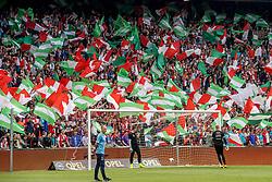 14-05-2017 NED: Kampioenswedstrijd Feyenoord - Heracles Almelo, Rotterdam<br /> In een uitverkochte Kuip pakt Feyenoord met een 3-1 overwinning het landskampioenschap / Support, publiek, legioen, vlaggen