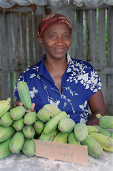 Woman selling bananas at shop on cooperative farm near Pinar del Rio; Cuba,