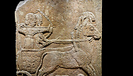 Hittite relief sculpted orthostat stone panel of Long Wall Limestone, Karkamıs, (Kargamıs), Carchemish (Karkemish), 900 - 700 B.C. Anatolian Civilisations Museum, Ankara, Turkey<br /> <br /> Chariot. One of the two figures in the chariot holds the horse's headstall while the other throws arrows. There is a naked enemy with an arrow in his hip lying face down under the horse's feet It is thought that this figure is depicted smaller than the other figures since it is an enemy soldier. The lower part of the orthostat is decorated with braiding motifs.<br /> <br /> On a black background. .<br />  <br /> If you prefer to buy from our ALAMY STOCK LIBRARY page at https://www.alamy.com/portfolio/paul-williams-funkystock/hittite-art-antiquities.html  - Type  Karkamıs in LOWER SEARCH WITHIN GALLERY box. Refine search by adding background colour, place, museum etc.<br /> <br /> Visit our HITTITE PHOTO COLLECTIONS for more photos to download or buy as wall art prints https://funkystock.photoshelter.com/gallery-collection/The-Hittites-Art-Artefacts-Antiquities-Historic-Sites-Pictures-Images-of/C0000NUBSMhSc3Oo