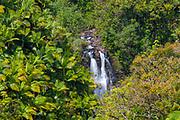 Waterfall, Hamakua Coast, Island of Hawaii