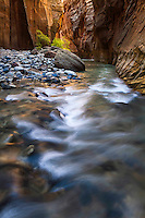 The Narrows in Zion National Park draw countless crowds of tourists to view the natural wonders of this amazing Southwest desert location.