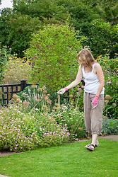 Feeding a lawn by hand with granular fertiliser.