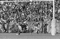Rugby Union - 1974 British Lions tour to South Africa - Third Test: South Africa 9 British Lions 26 (13/07/1974)..J J Wiliams try : ..Lions wing JJ Williams celebrates after scoring the first of his two tries during the third test at the Boet Erasmus Stadium, Port Elizabeth...