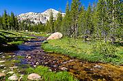 Unicorn Creek, Tuolumne Meadows, Yosemite National Park, California USA