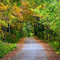 Old County Road, Damariscotta, Maine, October, 2012.