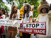 01 AUGUST 2013 - BANGKOK, THAILAND: Members of the SPCAT picketed the Thai parliament building in Bangkok Thursday to call attention to proposed anti-animal cruelty laws being debated by the Parliament. The laws would tighten animal cruelty law regarding the dog (and cat) meat trade, buying and selling exotic pets, ivory and endangered animal products (like bear bile and ivory). Thailand serves as a transit point for the endangered animal and exotic meat trade. Ivory is shipped to China. Dogs (for meat) are sold to Vietnam.     PHOTO BY JACK KURTZ