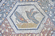 3rd century AD Roman mosaic panel of  two birds  from Thugga, Tunisia.  The Bardo Museum, Tunis, Tunisia. .<br /> <br /> If you prefer to buy from our ALAMY PHOTO LIBRARY  Collection visit : https://www.alamy.com/portfolio/paul-williams-funkystock/roman-mosaic.html - Type -   Bardo    - into the LOWER SEARCH WITHIN GALLERY box. Refine search by adding background colour, place, museum etc<br /> <br /> Visit our ROMAN MOSAIC PHOTO COLLECTIONS for more photos to download  as wall art prints https://funkystock.photoshelter.com/gallery-collection/Roman-Mosaics-Art-Pictures-Images/C0000LcfNel7FpLI