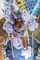 Dancer on a float in the Carnaval parade of Grande Rio samba school in the Sambadrome, Rio de Janeiro, Brazil.