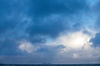 Ensom fugl i stormen.<br /> Foto: Svein Ove Ekornesvåg