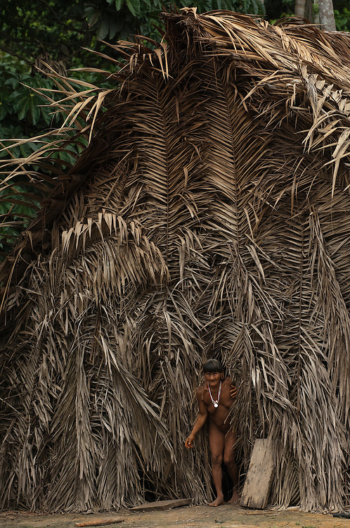 Huaorani Indian, Meñemo Bopoga outside her home which is a typical Huaorani house made of palm leaves over a frame of branches.<br /> Bameno Community. Yasuni National Park.<br /> Amazon rainforest, ECUADOR.  South America<br /> This Indian tribe were basically uncontacted until 1956 when missionaries from the Summer Institute of Linguistics made contact with them. However there are still some groups from the tribe that remain uncontacted.  They are known as the Tagaeri & Taromenane. Traditionally these Indians were very hostile and killed many people who tried to enter into their territory. Their territory is in the Yasuni National Park which is now also being exploited for oil.