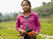 A portrait of a young Khmu ethnic minority girl working on her family farm in Ban Nam Khor, Oudomxay province, Lao PDR. The scarcity of agricultural land in Southern Yunnan province is promoting Chinese farmers and small scale entrepreneurs to cross the international border between China and Lao PDR in order to invest in cash crops. The villagers are supplied with seeds, plastic and fertilisers to grow various crops which are then exported back to China on a vast scale.