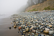 Marine fog obscures a beach covered in rounded stones on the North Coast between Chilean and Norwegian Memorial, Olympic National Park, Washington.