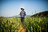 A man waters his crops near Dalat in the mountains of central Vietnam.
