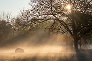 Morning fog in Middletown, N.Y., on Oct. 6, 2020.