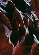 Navajo Sandstone tapestry, Dive of the Buckskin, Grand Staircase-Escalante National Monument, Utah.