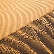 Sahara Sands IX (Western Desert, Egypt)