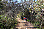 People running on the Lady Bird Lake Trail in South Austin