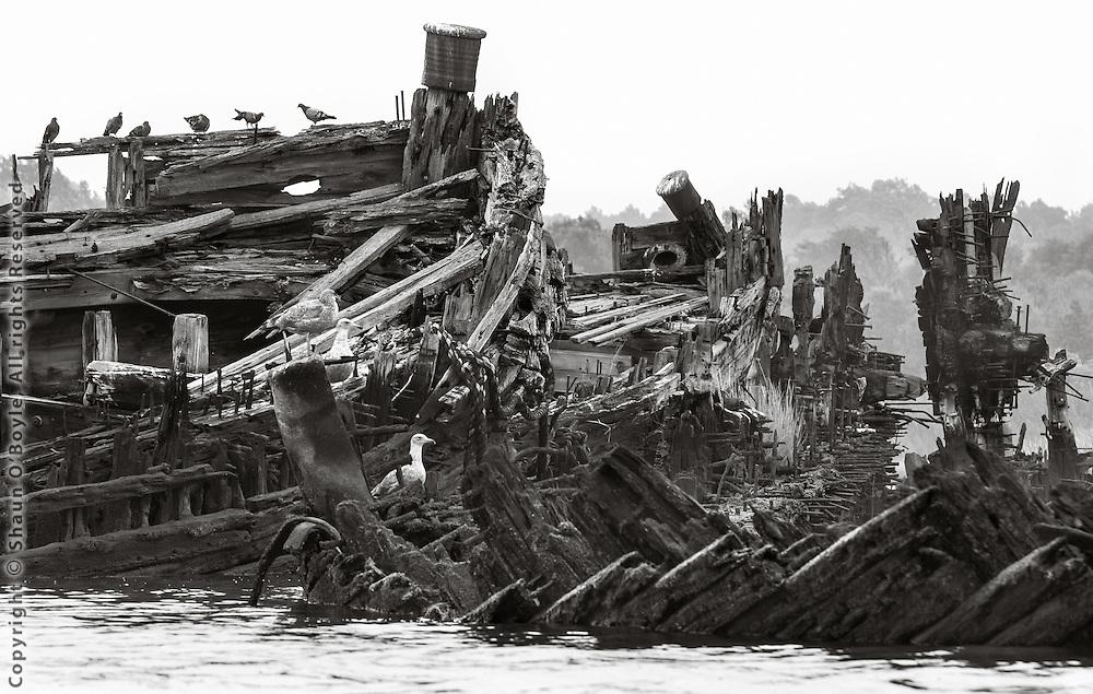 Wrecks, Arthur Kill