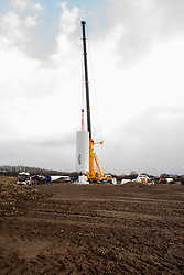 Ulley Wind Farm two massive cranes are used to lift the first of the four sections that make up the tower into place...13  March  2013.Image © Paul David Drabble
