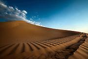 Arabian Desert, U.A.E.