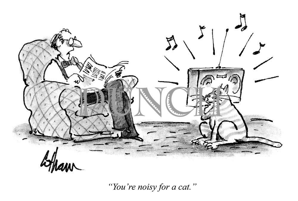 """""""You're noisy for a cat."""""""