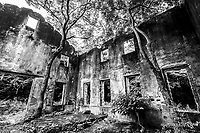 Kawatana Torpedo Ruins - At the time when the torpedo launch site was operative, torpedoes were launched at the Sasebo Navy Arsenal and Mitsubishi Nagasaki factory.  The final inspection and adjustment of torpedoes were done here. Today the facility is mostly an empty shell with trees picturesquely growing out of the buildings, like you might find at Angkor Wat.  It is difficult to believe that it was once bustling with activity and tension, used mostly today as a fishing hole and a spot for kids to play in the sea.