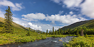 South Fork Eagle River in Chugach State Park in Southcentral Alaska. Summer. Morning.