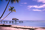 Beautiful sandy beach, calm blue tropical sea, with palm trees and palm thatched shelter on wooden jetty at Pigeon Point, Tobago, c 1962