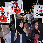 Rise for Rohingya Emergency protest
