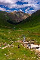 Hiking in American Basin, San Juan Mountains (range of the Rocky Mountains), Southwest Colorado USA
