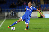 Marouane Chamakh of Cardiff city controls the ball. EFL Skybet championship match, Cardiff city v Sheffield Wednesday at the Cardiff city stadium in Cardiff, South Wales on Wednesday 19th October 2016.<br /> pic by Carl Robertson, Andrew Orchard sports photography.