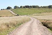 Sidbury Camp or Sidbury Hill Iron Age hill fort, Haxton Down, near Everleigh, Wiltshire, England, UK