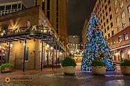 Christmas tree on Fulton Street in New Orleans, Louisiana, USA