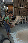 Mising winnowing rice<br /> Mising Tribe (Mishing or Miri Tribe)<br /> Majuli Island, Brahmaputra River<br /> Largest river island in India<br /> Assam,  ne India