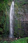 Waimoku Falls, Kipahulu, Hana Coast, Maui, Hawaii<br />