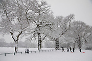 People in Highbury Park in Moseley enjoying the heavy snow fall on Sunday 10th December 2017 in Birmingham, United Kingdom. Deep snow arrived in much of the UK, closing roads and making driving treacherous, while many people simply enjoyed the weather.