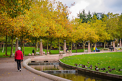 USA, Washington, Bellevue. Walker under autumn leaves in Downtown Park.