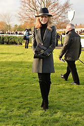 AMANDA HOLDEN at the 2013 Hennessy Gold Cup at Newbury Racecourse, Berkshire on 30th November 2013.