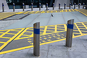 A pigeon sits incongruously within yellow markings behind stainless steel bollards with blue stripes on 10th August 2021 in London, United Kingdom.