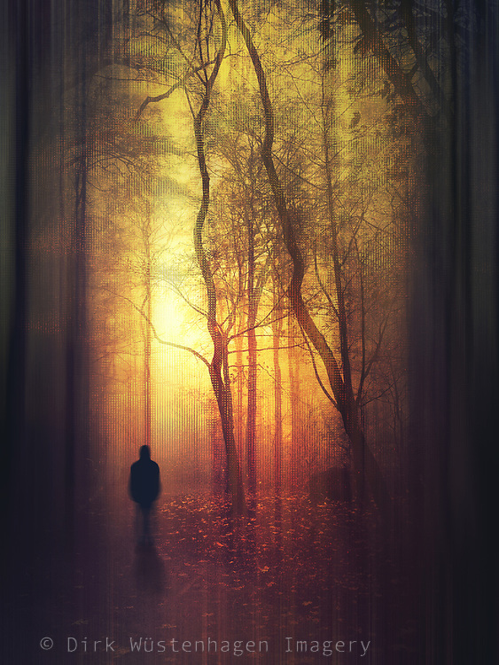 Blurry figure of a man walking in a forest at sunset on a december evening - abstract photograph