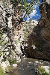 man walking in a stream in New Mexico