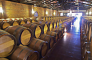 Oak barrel aging and fermentation cellar. Biblia Chora Winery, Kokkinohori, Kavala, Macedonia, Greece