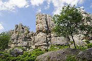 Quarzfelsen, Großer Pfahl, Naturschutzgebiet Großer Pfahl, Viechtach, Vorderer Bayerischer Wald, Bayern, Deutschland | quartz rocks, nature reserve Grosser Pfahl, Viechtach, Bavarian Forest, Bavaria, Germany
