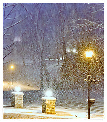 I took this photo of the snowfall the other night from our front porch.