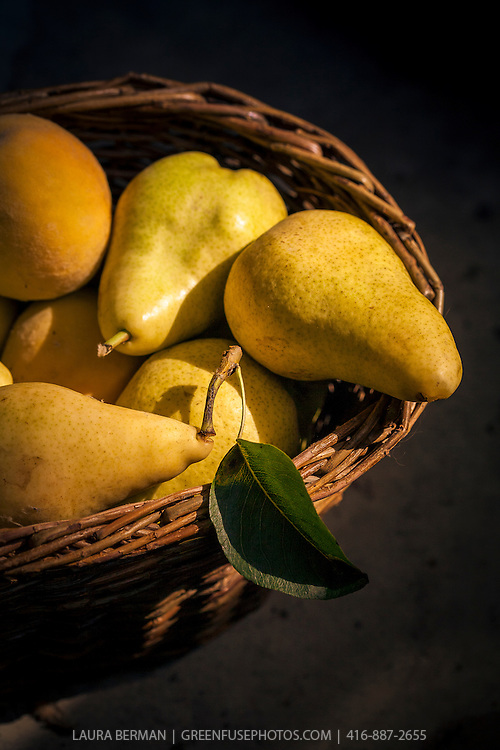 A basket of pears and apricots in the sun.