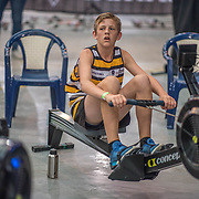 Matthew Jones - U14 Race #4  09:15am<br /> <br /> <br /> www.rowingcelebration.com Competing on Concept 2 ergometers at the 2018 NZ Indoor Rowing Championships. Avanti Drome, Cambridge,  Saturday 24 November 2018 © Copyright photo Steve McArthur / @RowingCelebration