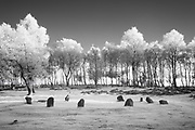 Nine Ladies Stone Circle, a Bronze Age remnant located on Stanton Moor in the White Peak. Derbyshire, Peak District National Park, England, UK. (infrared capture)